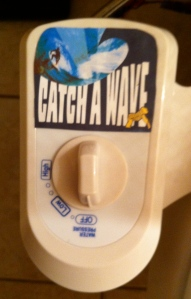 """Catch A Wave"" control panel. Choose from four wave sizes."